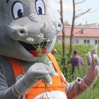 IHSE-Maskottchen Draco besichtigt die Gartenanlage